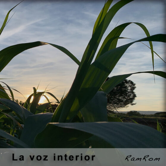 La voz interior